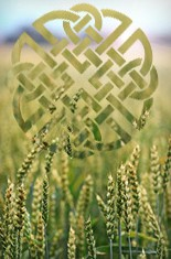 Lughnasa & Lug' Day image from 7th Sense website