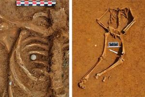 The Waterloo Skeleton of Friedrich Brandt